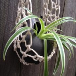 Faire Un Noeud Macramé Plant Cradle with Ceramic Pod Planter